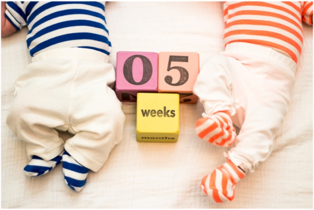 5weeks2
